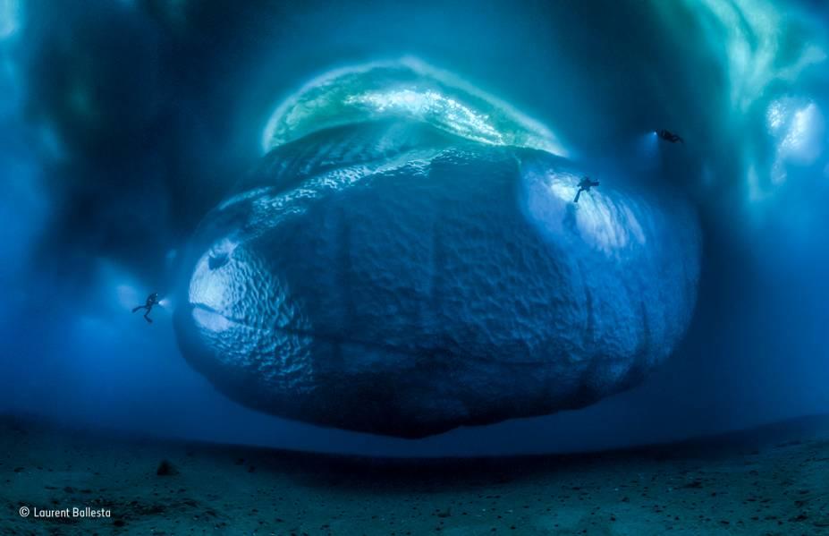 """A expressão """"é só a ponta do iceberg"""" dá uma boa dica do tamanho desses monstros marinhos. Na foto, o que você vê é a parte inferior, que fica submersa. Para criá-la, o francês<span>Laurent Ballesta e sua equipe de mergulhadores, que estavam o litoral da Antártica, precisaram selecionar 147 fotos tiradas de muito perto – e uní-las em um panorama inédito. Vencedor na categoria """"ambientes da Terra"""".</span>"""