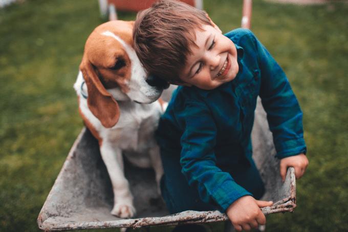 Donos de cachorros vivem mais