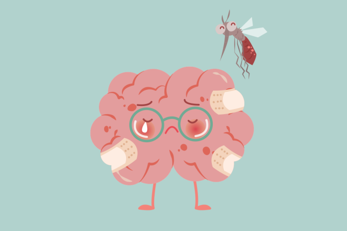 Zika vírus combate câncer no cérebro