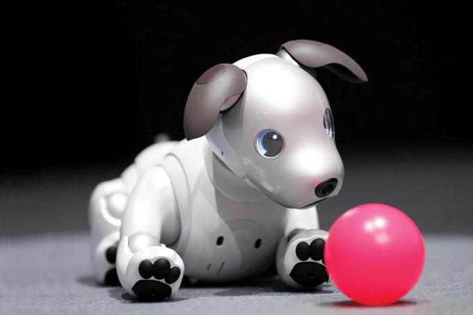 A volta do cachorro-robô