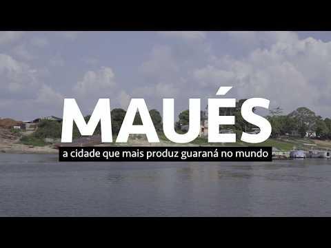 A cidade que mais produz guaraná no mundo