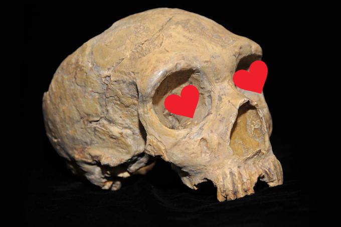 Nossos ancestrais faziam sexo com outras espécies