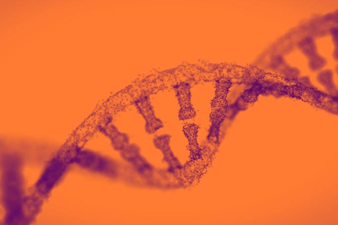 Cientistas confirmam nova estrutura de DNA em células humanas
