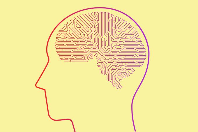 Cientistas estão prestes a entender casos de amnésia em Massachusetts