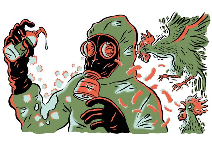3 notícias sobre epidemias