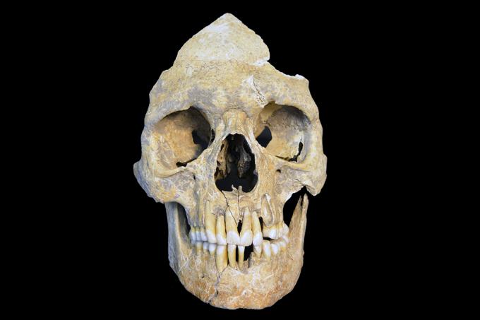 Pesquisadores encontram – e ressuscitam – vírus de 7 mil anos de idade