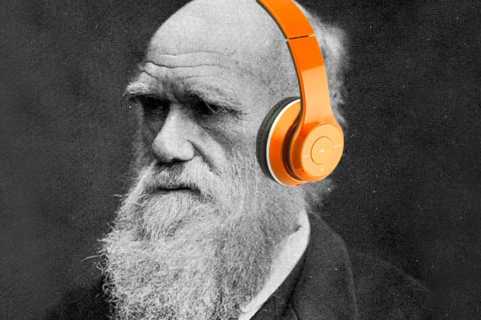 Sem Darwin, não existiria mp3