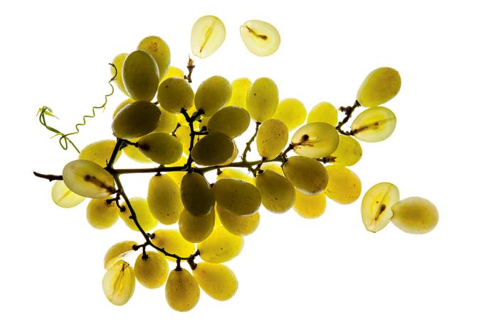 Principais variedades de uva_home