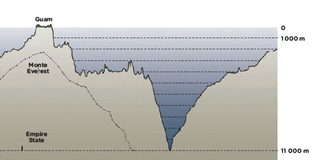 fossa-maritima-grafico