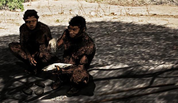 50aa5cc59827682faf000434hj4-prehistoria.jpeg