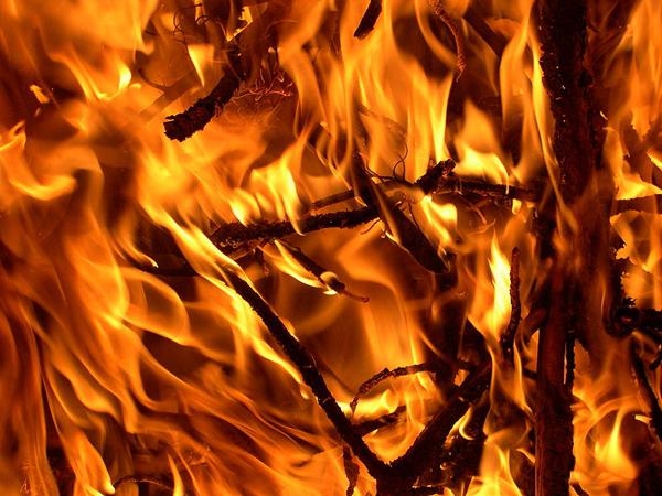 5209348d865be207dc000a92800px-fire_01.jpeg