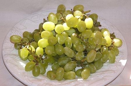 800px-Thompson_seedless_grapes