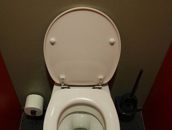 52af468c982768660600041f683px-toilet_in_german_theater_munich.jpeg