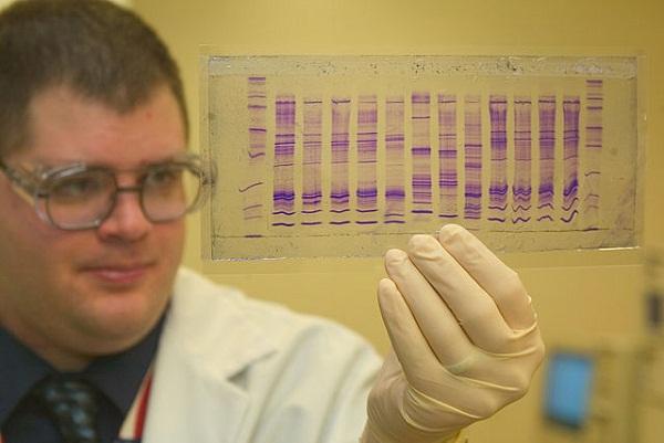 640px-CBP_chemist_reads_a_DNA_profile