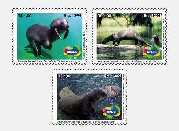 selos-amazonia