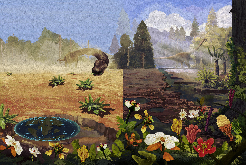 t_ME170_Flora dos dinossauros 03 ilustra