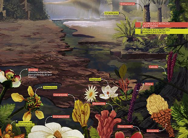 Plantas do tempo dos dinossauros