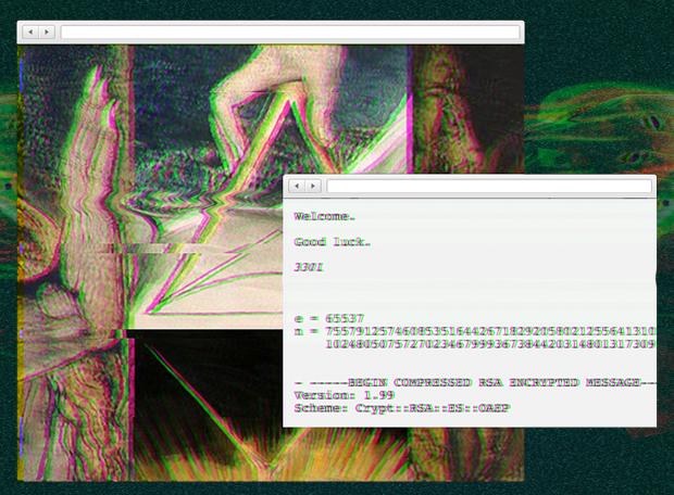 Cicada_Leg2