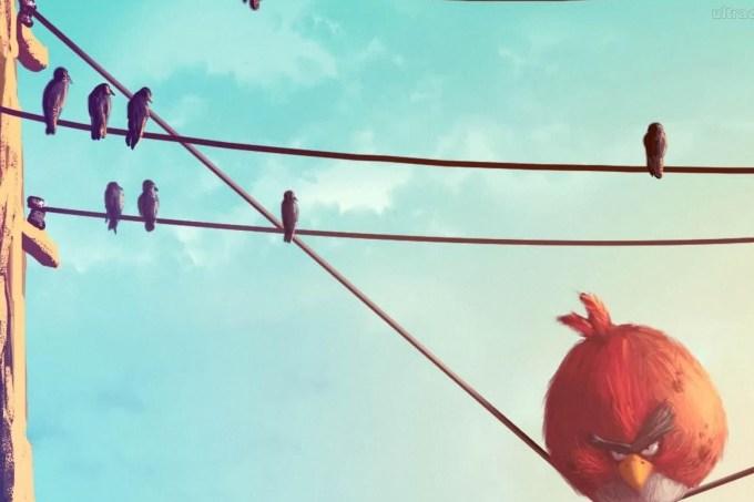 56e313900e21630a3e16e46b278580_papel-de-parede-angry-bird-vermelho-no-fio-eletrico_1920x1080.jpeg
