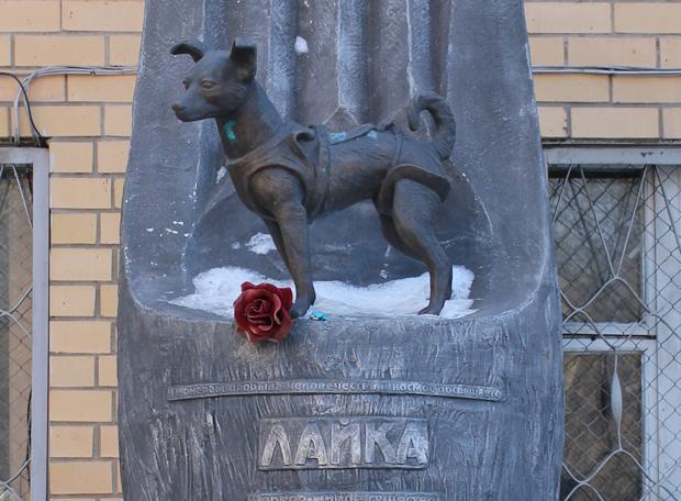 Laika monumento