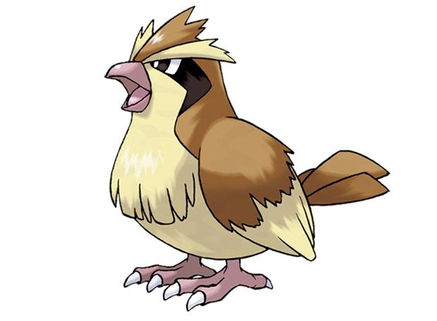 Pokémon Pidgey