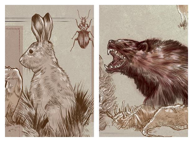 animais-psicopatas6