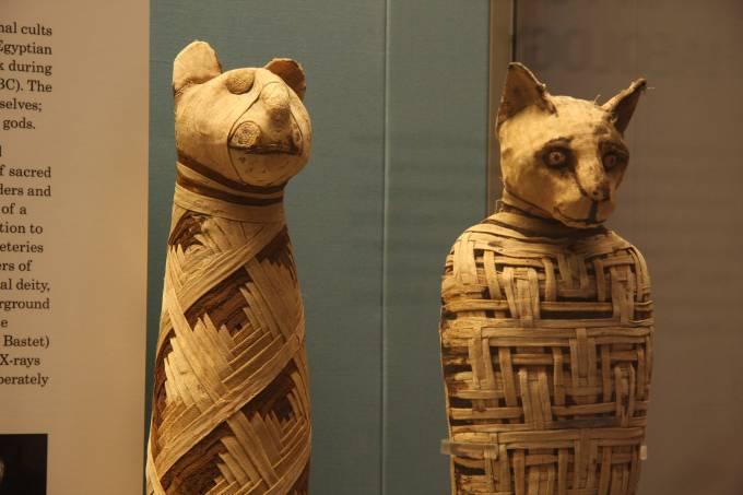 577159020e216345751ad175british_museum-_egypt_mummies_of_animals_-4423733728.jpeg