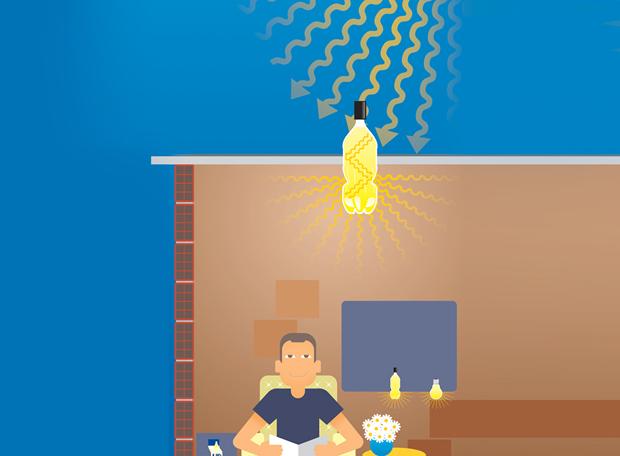 lampada-pet2