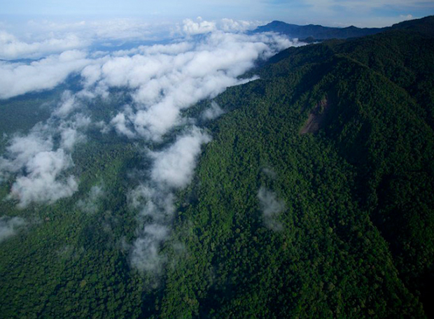 Montanhas Foja