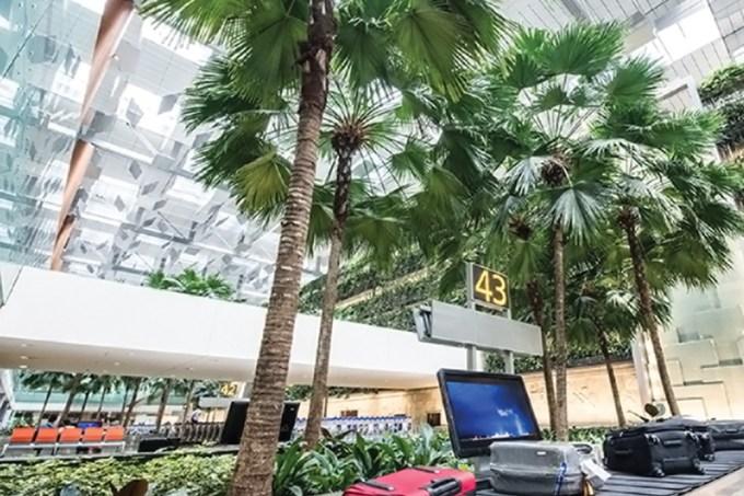 Aeroporto Singapura