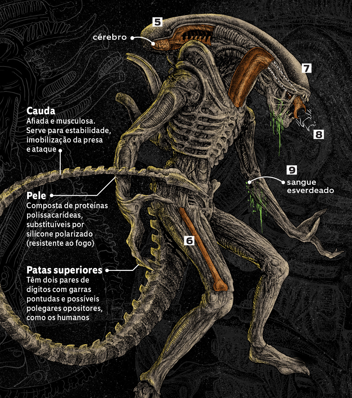 alien-completo