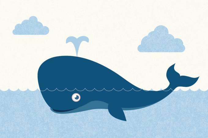 Quais são as maiores baleias do mundo?