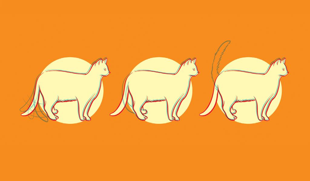 caudas-animais9