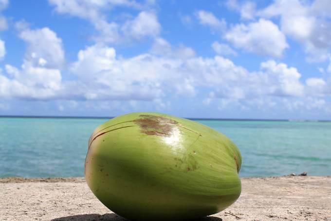 Como a água se forma dentro do coco?