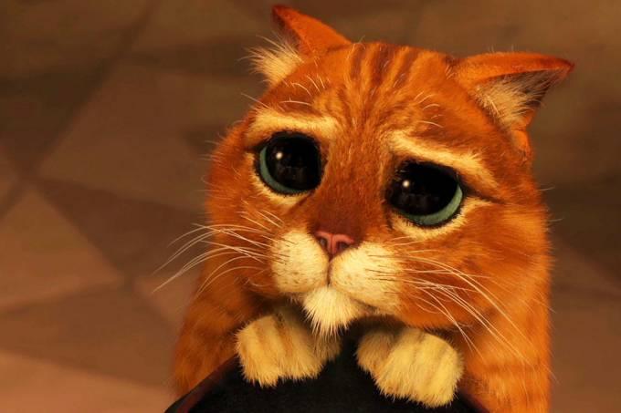 Existe algum animal que chora