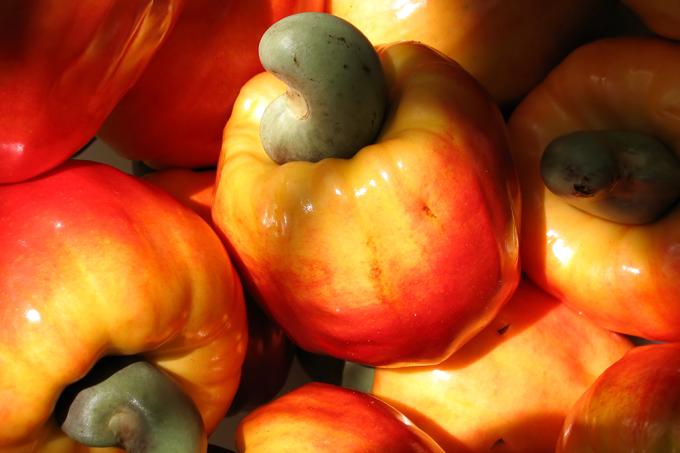 Que frutas são originais do Brasil?