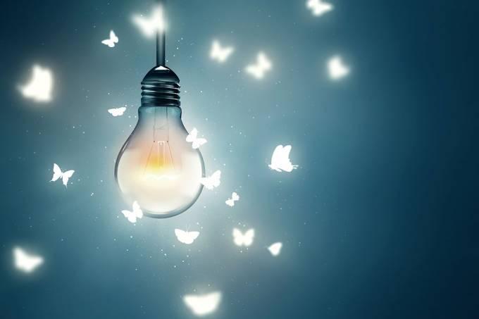 Por que a luz elétrica atrai insetos voadores?
