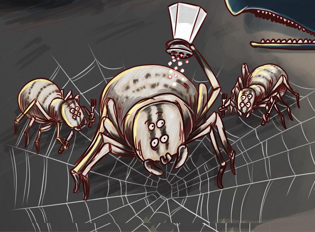 os-animais-tambem-cometem-suicidio-aranha-europeia