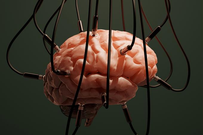 Quando será possível hackear o cérebro? Estes brasileiros sabem a resposta_HOME