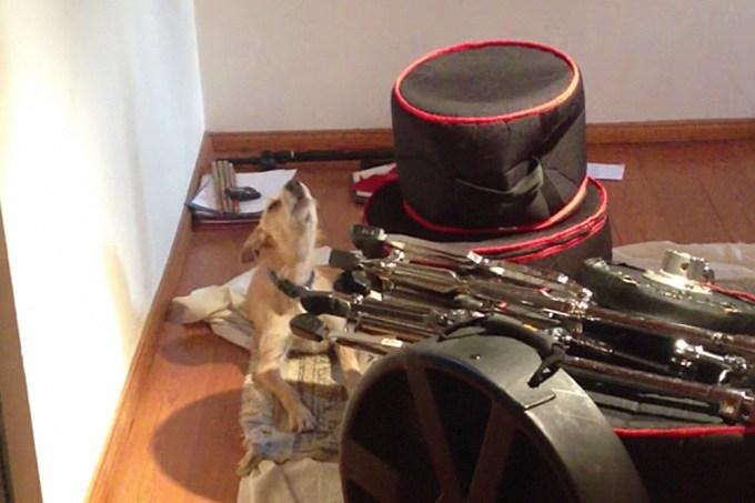 Cachorro sofredor participa de banda de blues