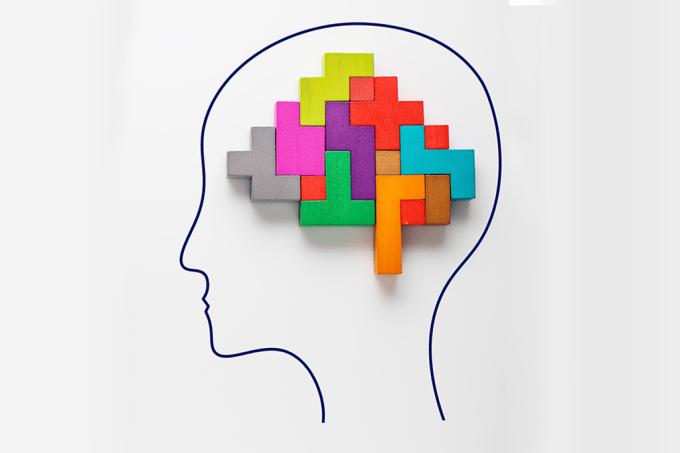 Montagem cerebro