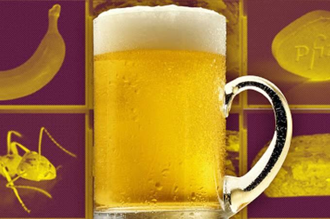 cerveja site