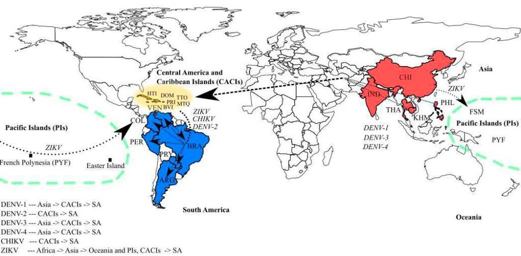 Mapa mostra a rota do vírus zika até chegar ao Brasil