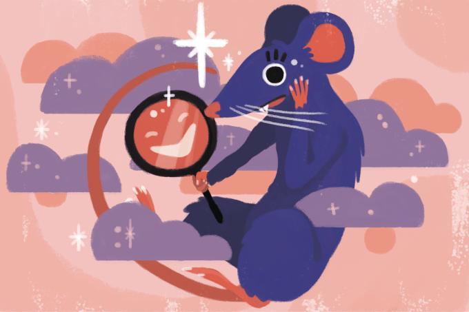 SI393_ratos