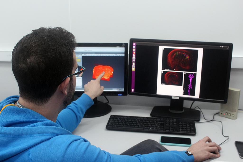 Matheus no interior de uma das cabanas do acelerador menor, o UVX. Na tela, ele mostra a visualização 3D do cérebro de um camundongo gerada pelos raios X do equipamento.