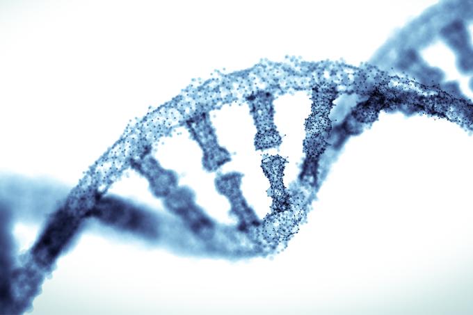 Cadeia genética