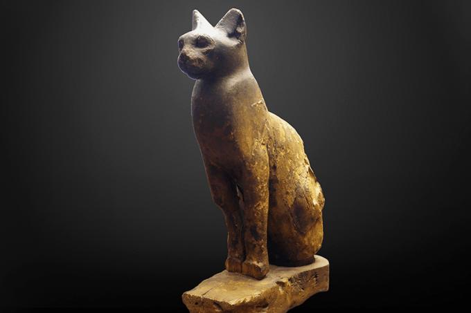 Múmia de gato