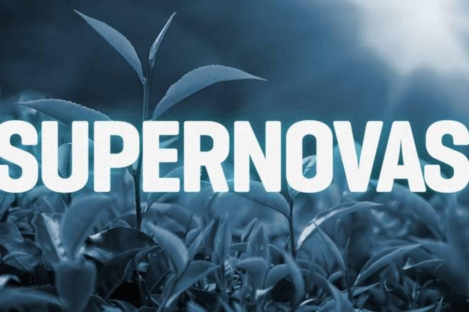 Quando surgiu a fotossíntese? – SUPERNOVAS