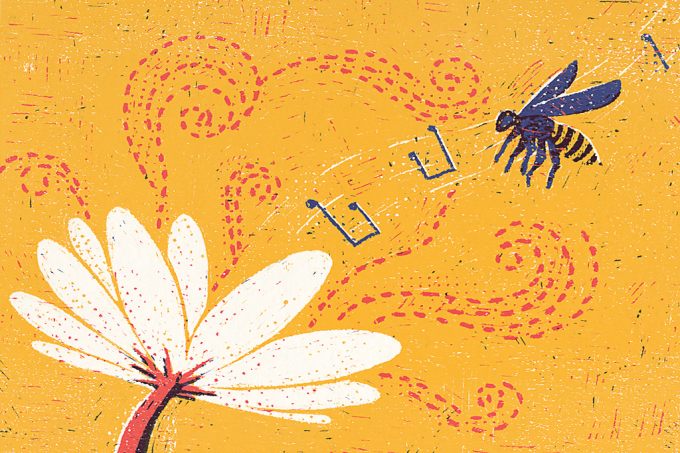 si_399_flores e abelhas