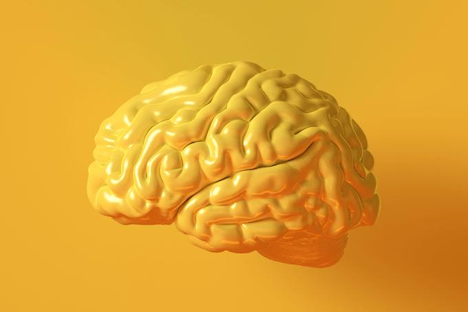 cerebro-autista